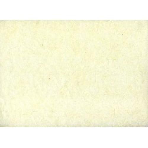 Ριζόχαρτα Μονόχρωμα